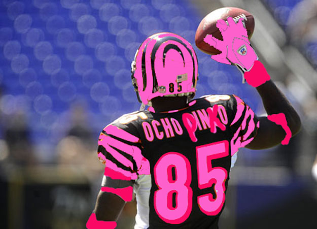 Don 39 t buy into breast cancer awareness for Breast cancer nfl shirts